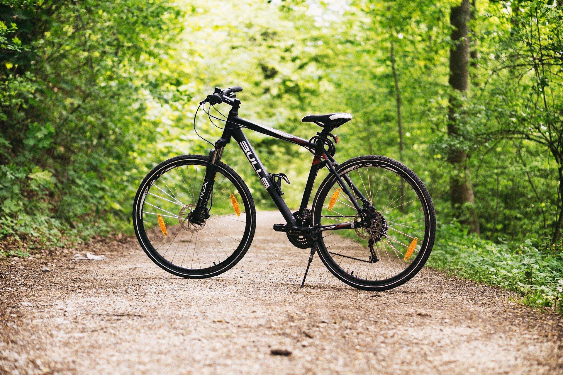 foto bicicletta nel parco